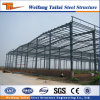 Steel Structure Building with Good Quality Construction Projects Warehouse in China