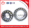 From China New Products Self-Aligning Ball Bearing (1319 ATN AKTN)
