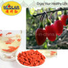 Medlar Lbp Hot Sell Organic Dried Goji