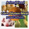 Corn Gluten for Animal Feed Protein 60%