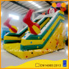 Clown Colorful Slide for Kid (AQ927)