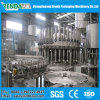 Fruit Juice Packaging Machine / Juice Filling Machine