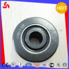 Cyrd 1 3/4 Needle Roller Bearing with Low Friction of High Tech