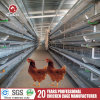 H Type Poultry Farming Equipment Layer Battery Cage