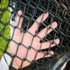 6FT Black Vinyl Coated Galvanized Chain Link Fence