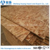 Waterproof OSB Plywood/1220*2440mm Cheap OSB, High Quality OSB Board