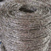 Hot Dipped Galvanized Double Twist Barbed Wire