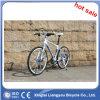 Alloy Hill Bike/ Dirt Mountain Bike/ Cross Country Bike