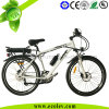 Rear Lithium Battery Electric Bicycles (PE-TDE08Z-1)