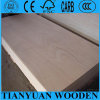 6mm Okoume/4X8 Bintangor Commercial Plywood