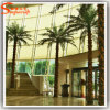 Factory Direct Decorative Artificial Fake Washington Palm Tree