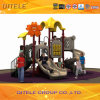Hawaii Series Kids Outdoor Amusement Park Playground Equipment (2014CL-17201)