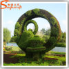 Professional Manufacturer Outdoor Decorative Artificial Topiary Plants