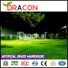 Putting Green Artificial Plastic Grass Mat (L-2011)
