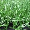 Flat Artificial Grass