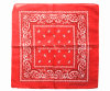 China Factory OEM Produce Custom Double Sides Print Cotton Red Paisley Scarf