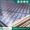 18mm Black Film Faced Plywood / Concrete Formwork / Building Material