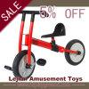 Children Bicycle for Kindergarden Indoor Use (J1502-10)