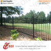 Ornamental Black Power Coated Wrought Iron Fence