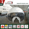 10m Span Hot-DIP Galvanized Steel Frame White Cover Dome Tent with Clear Front Cover for Events