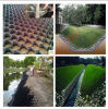 High Quality Whole Sale Plastic Geocell for Slope Retaining