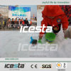 ICESTA flake ice machine