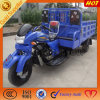 Motorized Heavy Carrying Cargo Tricycle