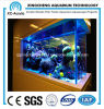 Square Ornamental Fish Tank