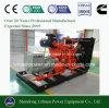 Ce Standard Green Power 500kw Biogas Generator Set Price