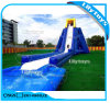 Giant Inflatable Slide Water Slide for Adult