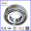 Needle Roller Bearing Freewheel (AS60)