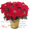 Artificial New Design Flower for Christmas Decoration