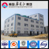 China Professional Supplier Steel Structure Workshop (SSW-95)
