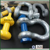 Us Type Forged Shackle with Screw Pin
