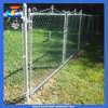 The Courtyard Protective Chain Link Fence
