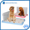 Dog Toilet for Male Dog /with Wall/ Training Pet Toilet
