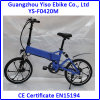 Mag/Alumnium Alloy Wheels Electric Folding Bicycle
