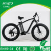 2017 New Fat Tire Beach Cruiser Bike with Electric Assistant