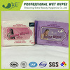 Personal Care Hygiene Care Antibacterial Wet Wipe
