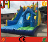 Giant Inflatable Slide for Water Park
