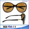 Latest Style Plastic Ladies Popular Fashion Sunglasses