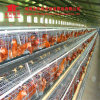 Galvanized Wire Mesh Chicken Cage for Chicken Farms Africa Poultry Equipment