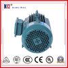 AC Electric Three Phases Asynchronous Servo Motor