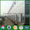 China Supplier Low Cost Multi-Span Glass Greenhouse