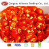 Frozen Top Quality Chili Rings with Good Price