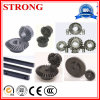 High Quality Gear Pinion Used for Building Elevator