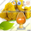 CAS: 458-37-7 Natural Turmeric Curcumin Curcumin Supplier