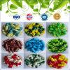 GMP Certified Lepidium Meyenii Walp Plant Extract Capsule