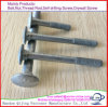 Carbon Steel DIN603 Galvanized Mushroom Head Carriage Bolts