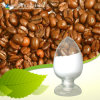 Factory Supply High Quality 99% 98% Caffeic Acid